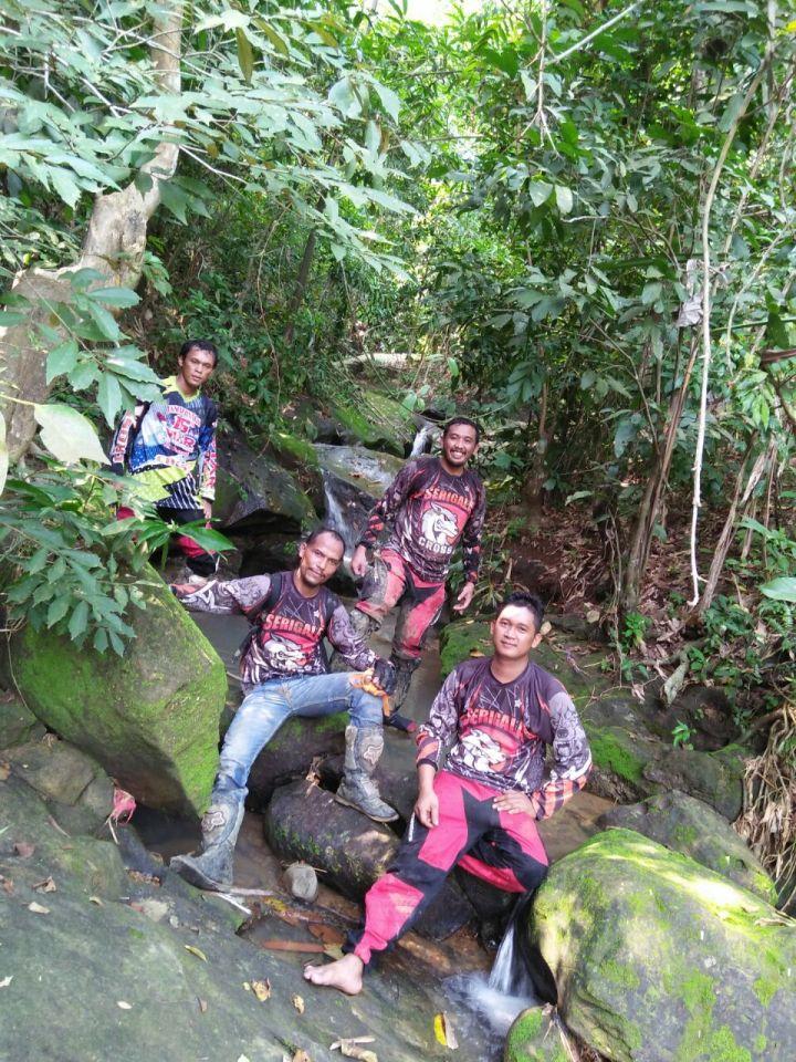 Serigala cross sedang berfoto disungai indah yang tersembunyi di Karawang